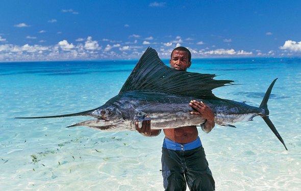 Сейшельские острова: