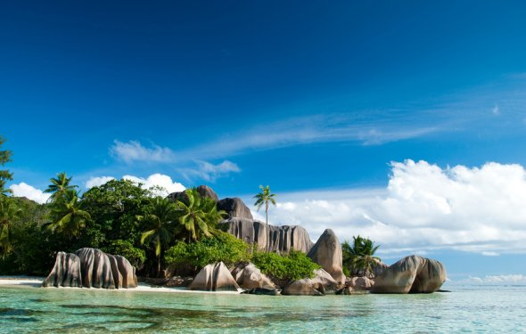 пальмы, Сейшелы, острова