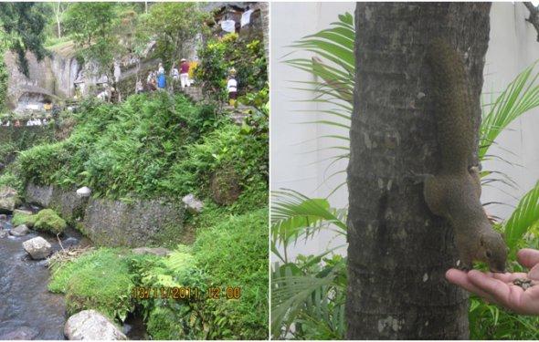 отзывы об отдыхе на Бали