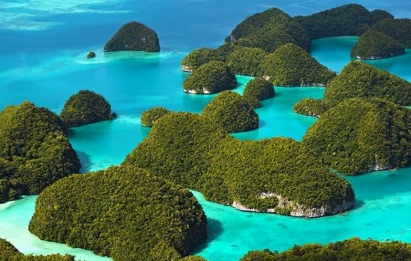 Туры на Багамские острова из